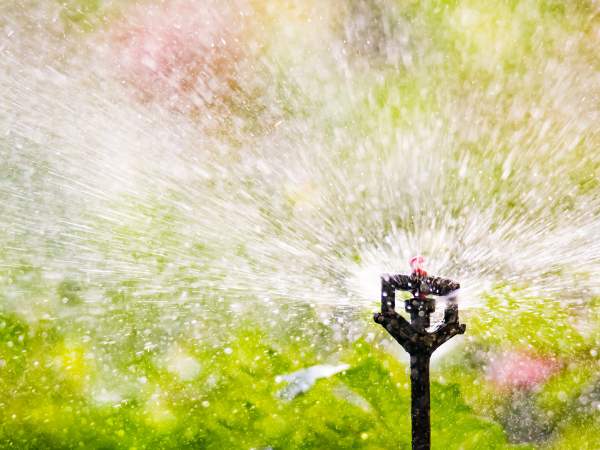Automatische Bewässerung Smart Home myHomeControl